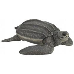 Tortuga Laúd - Papo
