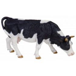 Vaca negra y blanca pastando - Papo