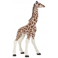 Cría jirafa - Papo