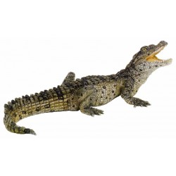 Cría cocodrilo - Papo