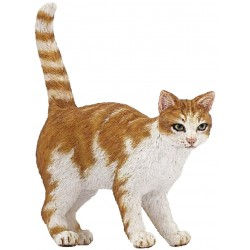 Gato pelirrojo - Papo
