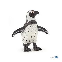 Pingüino Africano - Papo