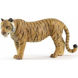 Gran Tigre Hembra
