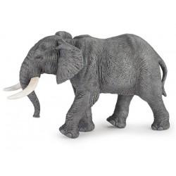 Gran Elefante Africano