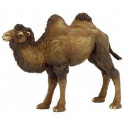 Camello de Bactriane - Papo