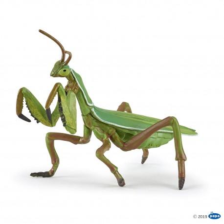 Mantis Religiosa - Papo