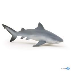 Tiburon Sarda - Papo
