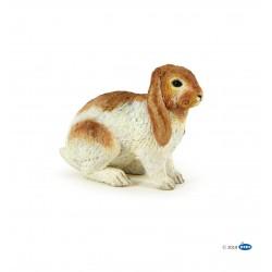 Conejo Carnero - Papo