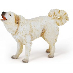 Perro del Pirineo - PAPO