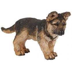 Cachorro de Pastor Alemán - Papo